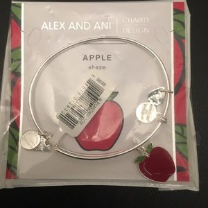 Alex and Ani silver charm bangle